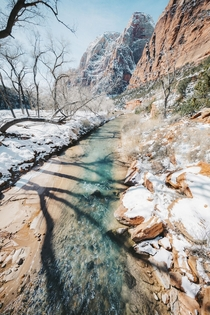 A Sunny Winter Day on the Virgin River in Zion National Park Utah