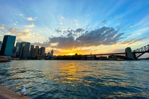 A sunset a seagull and a bridge Sydney Harbour Australia