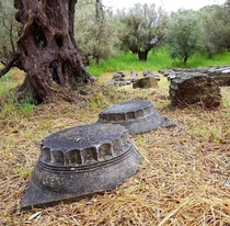 A temple built  years ago Abandoned  years ago Remaining pieces rest with old olive trees Sparta Greece