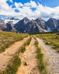 A trail that seemed to be made for people with crutches Alberta Canada natureprofessor