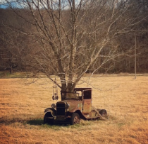 A tree grows through an abandoned car in rural Benton County Arkansas image via a friend