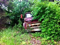 A truck in the woods of Missouri