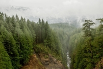 A typical rainy cloudy day in the forests of Washington