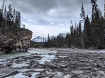 A unique view of the Canadian Rockies from a low Athabasca River  x