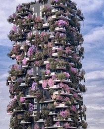 A vertical forest in Italy