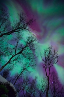 A very beautiful and colorful display of Northern Lights over Norway