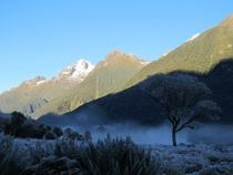 A very frosty start to the day Hollyford Track NZ