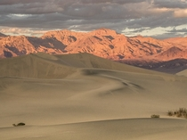 A very grainy golden-hour Death Valley National Park CA  IG TallCupOfChocolateMilk