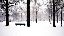 A very snowy Juniper Valley Park New York City  Photographed by Mark Garbowski