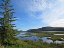 A view of Hansens Lagoon from off the trail in Cape Scott Provincial Park BC It was a beautiful and calm evening