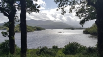 A view of Lough Leane from a trail in Killarney National Park Ireland OC x