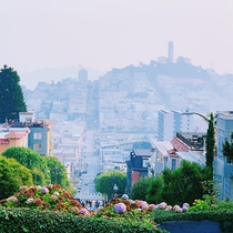 A view of San Francisco from Lombard Street