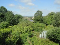 A view of the lush foliage from my bedroom Complete with local church  England Isle of Wight