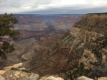A view so mesmerisingly deep it looked like a painted backdrop Near Bright Angel Lodge Grand Canyon Arizona