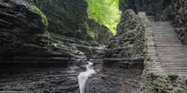 A walk through the Gorge in Watkins Glen NY