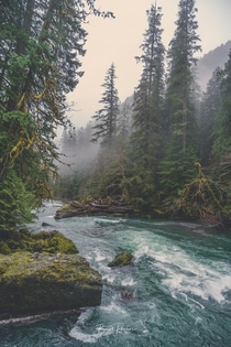 A walk through the Mist Staircase Rapids near Lake Cushman WA  IG  Lionseye_Photos