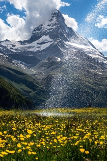 A water fountain in front of the majestic mountain Matterhorn making the flowers grow and shine bright OC x