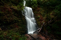 A waterfall amongst the California redwoods OC x