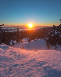 A windy evening on mount Seymour in Vancouver BC