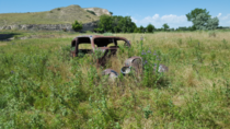 Abandoned Automobile - Nebraska