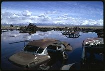Abandoned Automobiles and Other Debris Clutter an Acid Water and Oil Filled Five Acre Pond