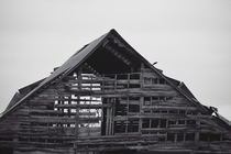 Abandoned Barn in Tennessee  -Weathered boards and rusting tin catch the eye along every southern highway