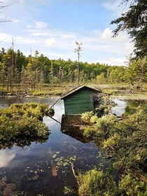Abandoned boathouse slowly sinking Devils Lake Ontario Canada