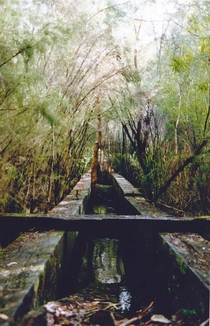 Abandoned bridge in abandoned logging town SW Western Aust