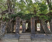 Abandoned British architecture of s in Ross Island Andaman amp Nicobar Islands India