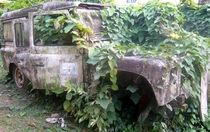 abandoned British Foreign Aid Jeep Limbe in Cameroon photographer unknown