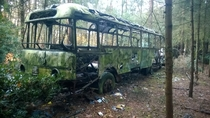 Abandoned bus I found in the woods