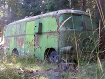 Abandoned bus in Bulgarian forest