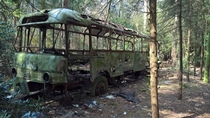 abandoned bus in the woods  the Netherlands