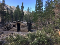 Abandoned cabin in the California wilderness
