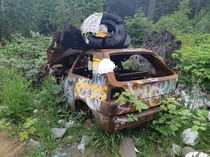 Abandoned car graffitied and littered in Harrison hot springs BC