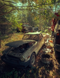 Abandoned car graveyard in somewhere in MA