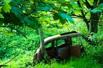 Abandoned car in a Scottish forest toffersonn