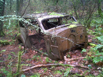 Abandoned car in forest near Mosier Tunnels Hood River Oregon