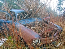 Abandoned car in Nova Scotia