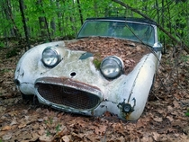 Abandoned car Still smiling after all these years