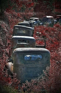 Abandoned cars forming a traffic jam
