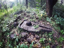 Abandoned Centuries old Shiv Lingam at Mhadei wildlife sanctuary India