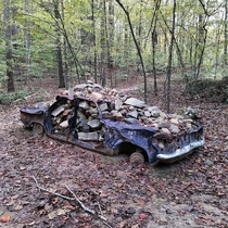 Abandoned Chevy Corvair full of rocks Chapel Hill NC
