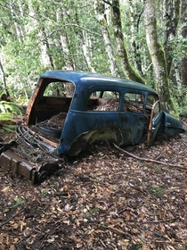 Abandoned Chevy in the rainforest