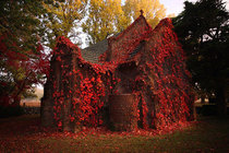 Abandoned church in autumn Photo by Cain Pascoe Australia