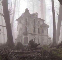 Abandoned church in the woods X