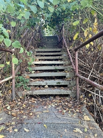 Abandoned city steps Lawrenceville Pittsburgh pa - one of my favorite parts of the city