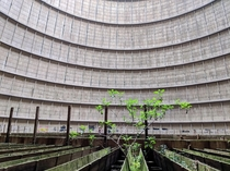 Abandoned cooling tower of a powerplant in Belgium