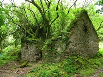 Abandoned cottage along the Kerry Way in Ireland