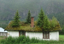 Abandoned cottage in Norway  Photo by Robert Snow